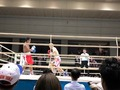 クラッシュボクシング